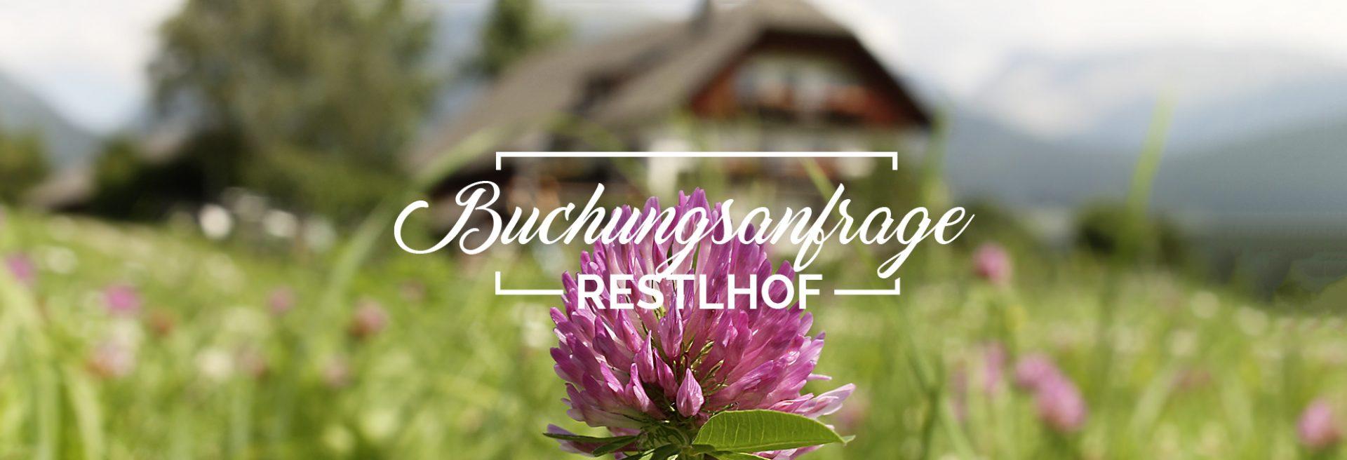 Header_Buchung